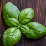 basil natural recipe for skin care